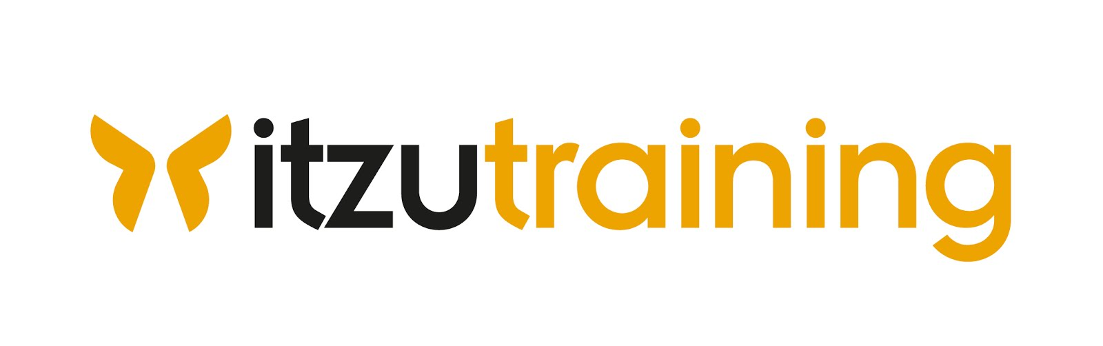 Logo Itzu Training